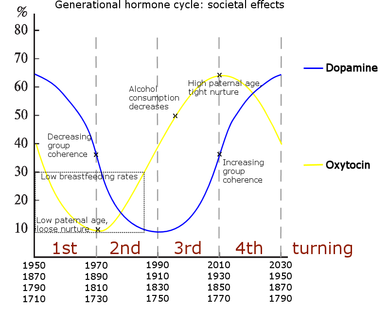 Generational hormone cycle